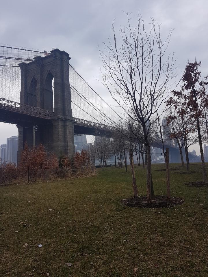 3 jours à New York par moi-même.Day-1