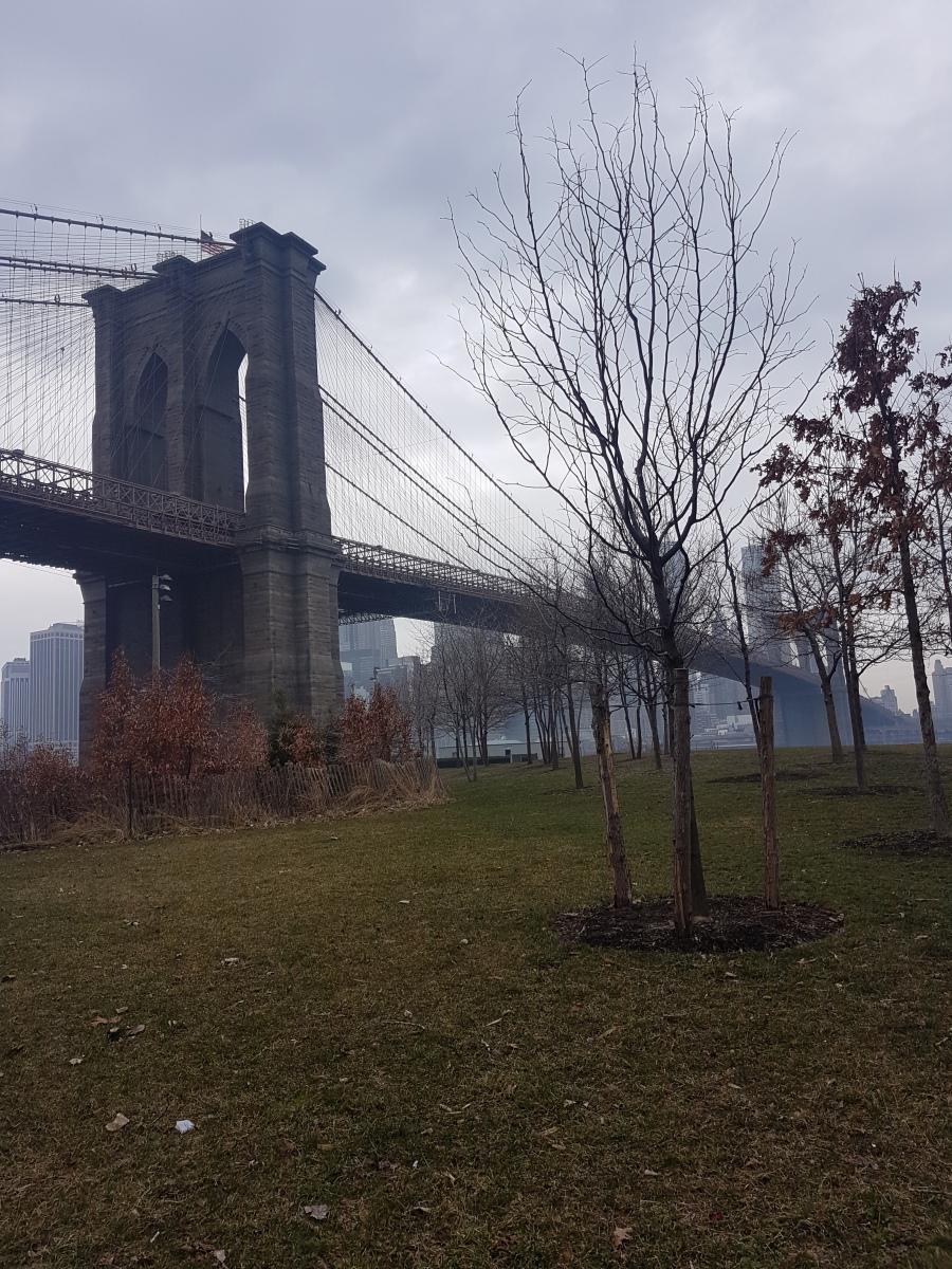 3 jours à New York par moi-même. Day-1